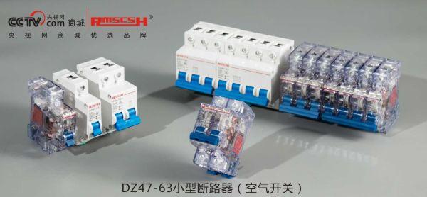 DZ47-63小型断路器(空气开关).jpg