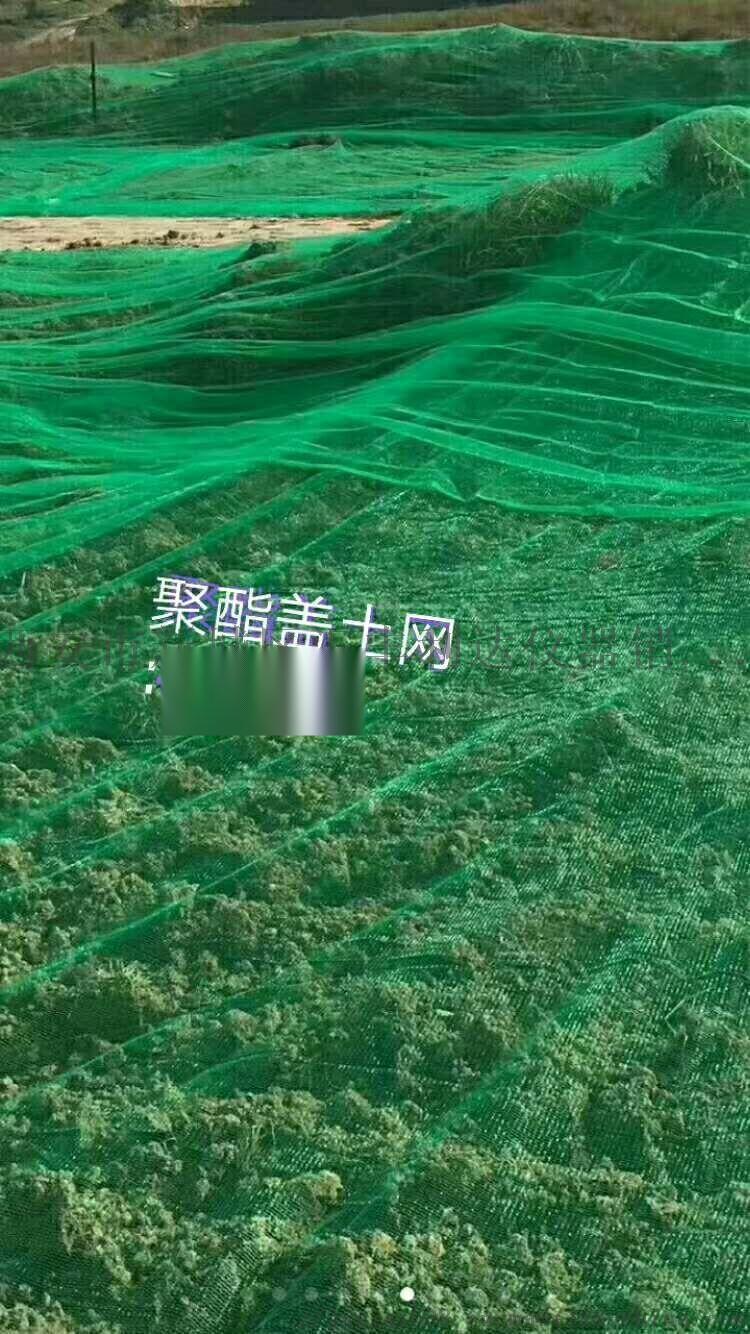 西安綠草坪人造草坪18992812668814311635