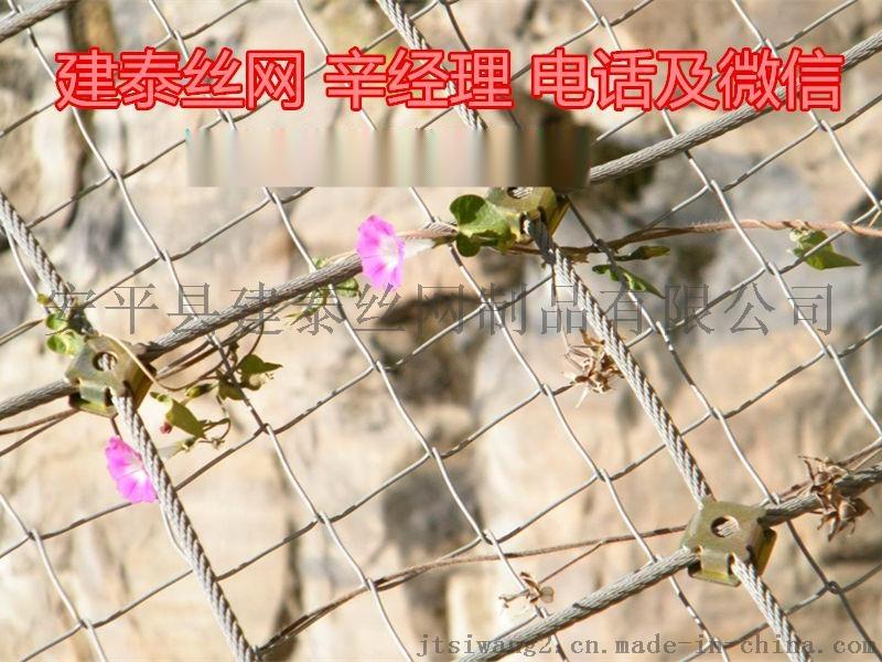 主动边坡防护网型号65614845