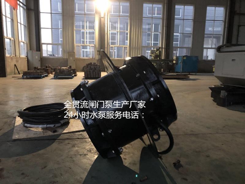 闸门泵3.jpg