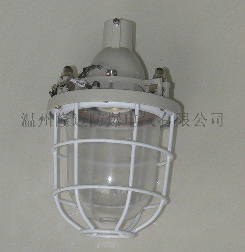 防爆型防爆燈BAD-100