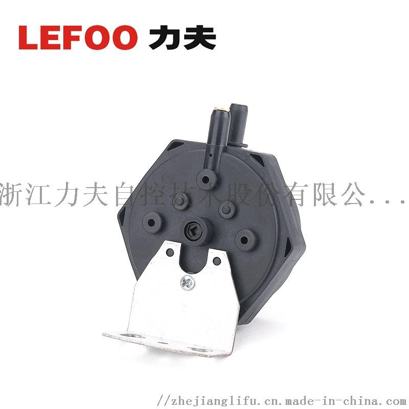 LF31.jpg