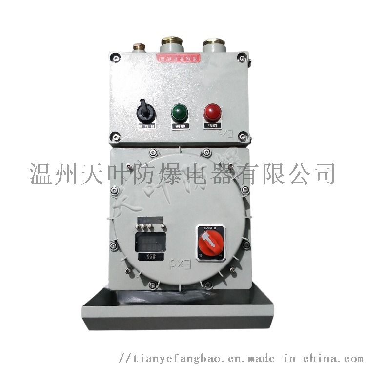 防爆IIC级温控箱电伴热配电箱 温度控制箱838354102