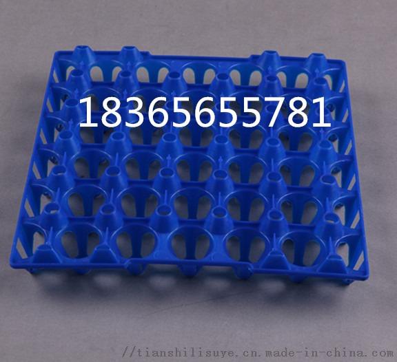 山东塑料鸡蛋托生产厂家 优质塑料鸡蛋托113064402