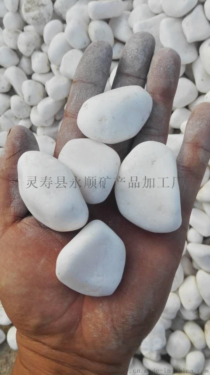 北京2-3厘米抛光白色鹅卵石多少钱一吨737269212