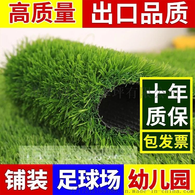 草坪主圖5.jpg