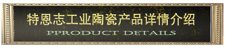 06特恩志工业陶瓷产品详情介绍.jpg