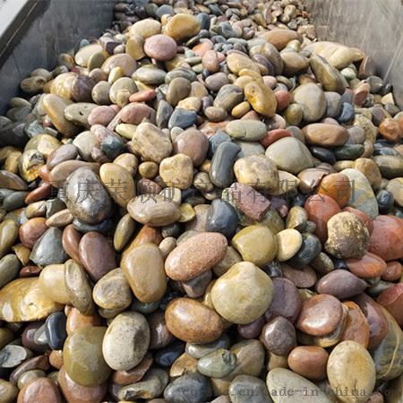 大鹅卵石8-15公分