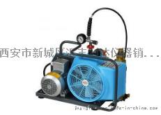 西安正压式空气呼吸器充气泵13659259282776992075