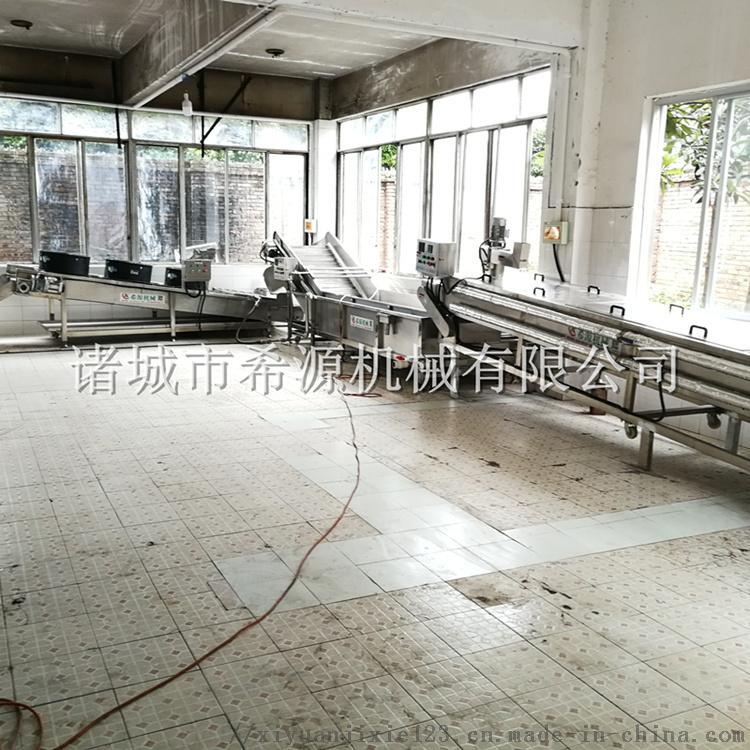 四川鲜花椒加工设备 保鲜花椒清洗杀青生产线825744362
