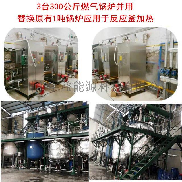 石鍋魚配套用全自動燃氣蒸汽鍋爐737200402