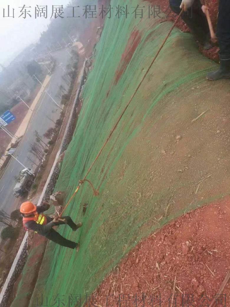 土工网垫 三维植草网 护坡绿化植草网772600272