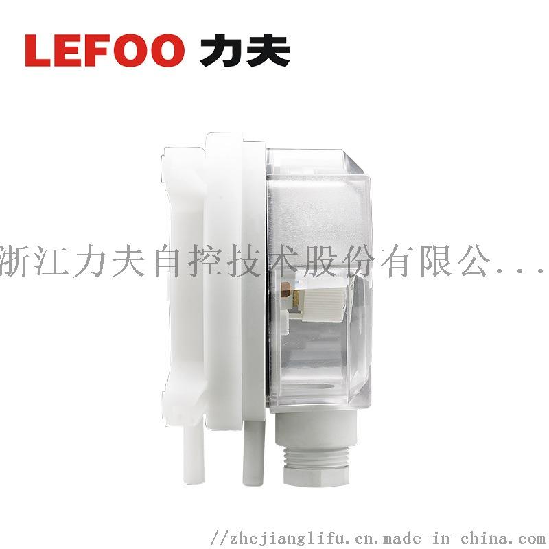 LF324 (2).jpg