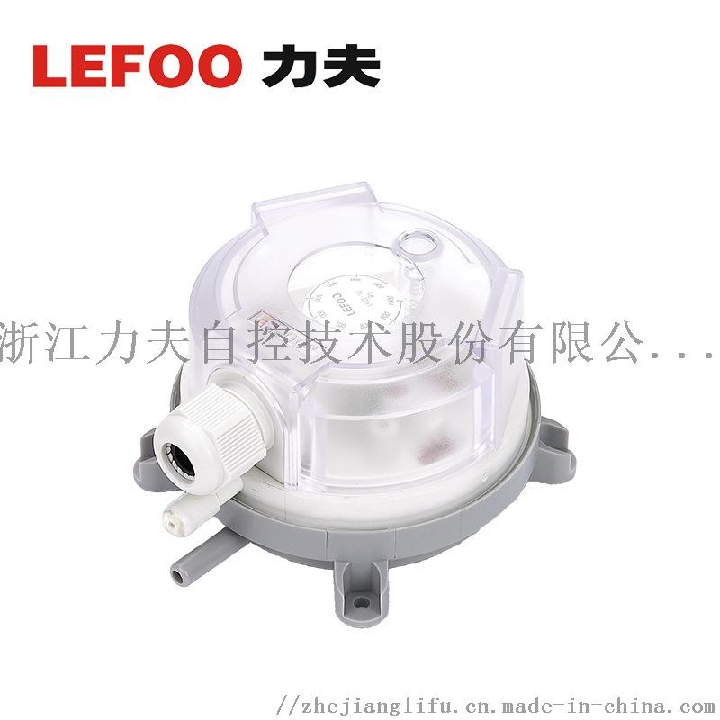 LF326.jpg