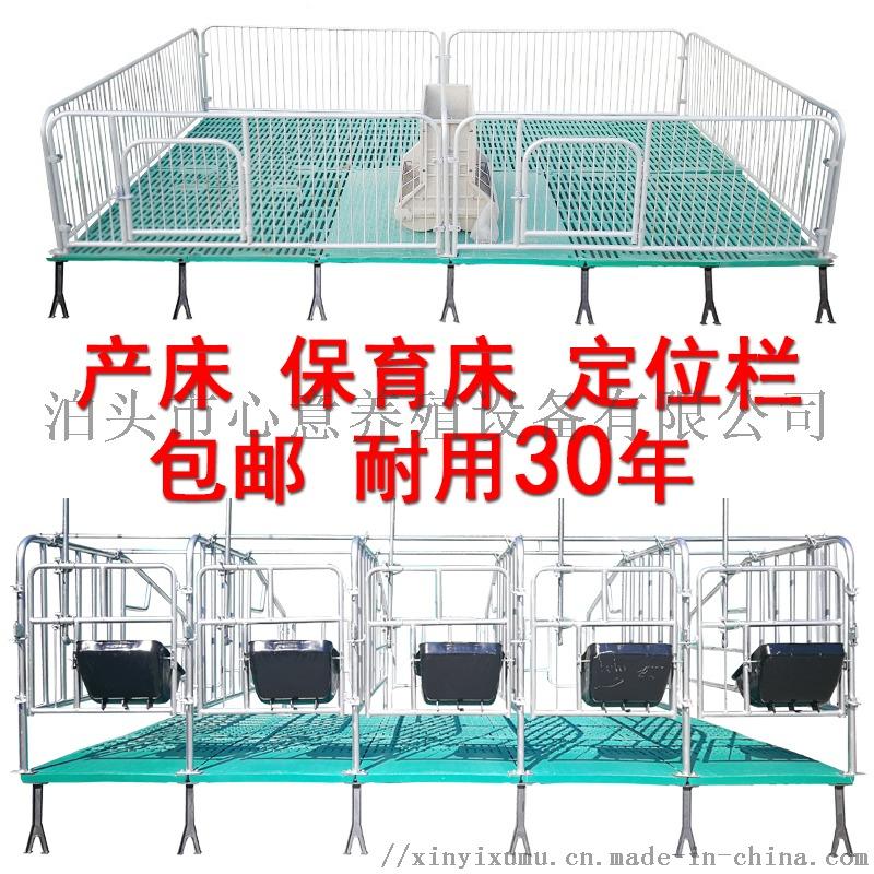 母猪定位栏猪用限位栏10猪位加厚带食槽国标养猪设备846732932