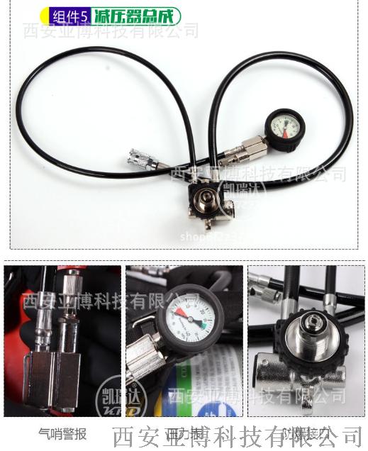 哪余有賣正壓空氣呼吸器 自給式鋼瓶98191315