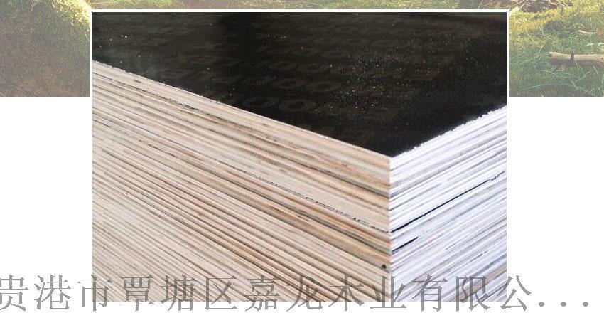 临沂建筑胶合板【嘉龙】建筑用木胶板103843155