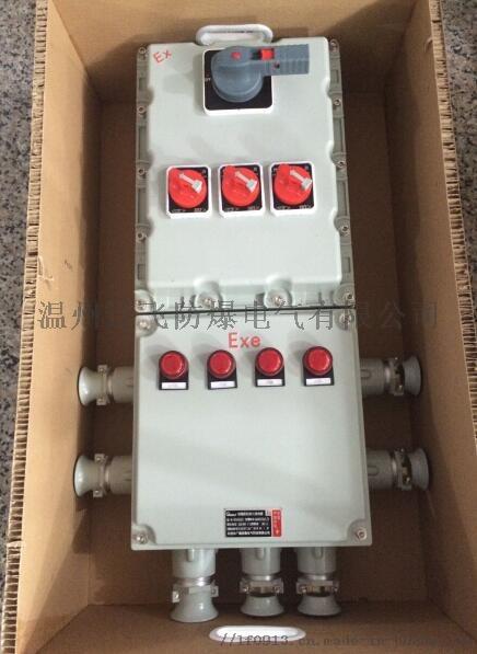 明装6回路带总开关防爆配电箱764454022