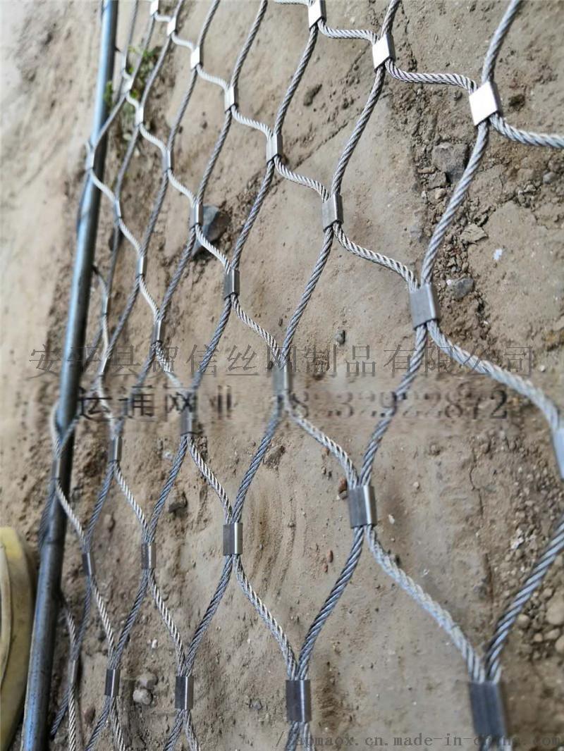 马戏团表演防护网直接厂家805588252