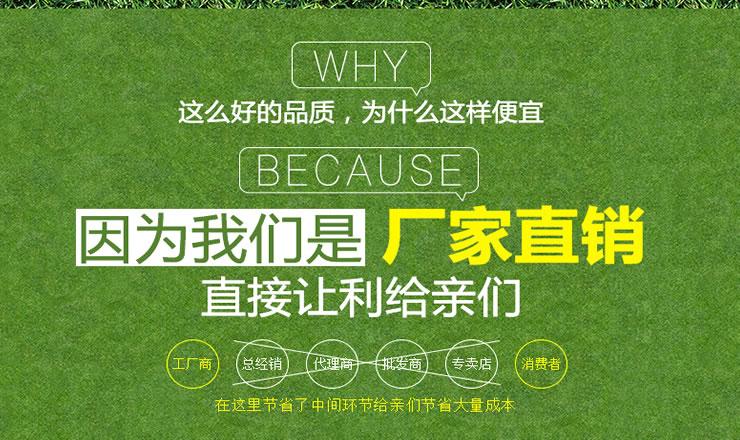 模擬草坪地毯人造塑料草坪圍擋106269092