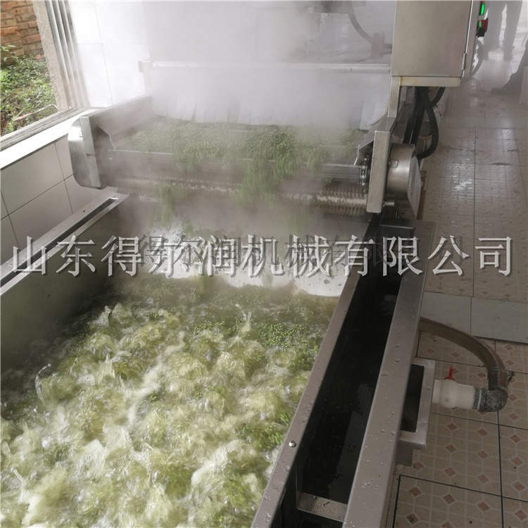 四川 D鲜花椒生产线 花椒杀青机 花椒杀青漂烫设备60915242