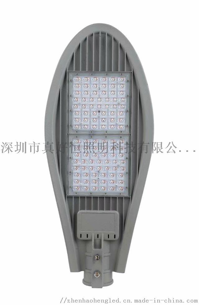寶劍單顆壓鑄路燈 (5).jpg