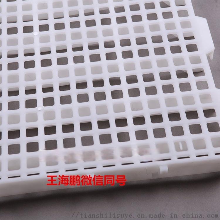 厂家大量供应鸭用漏粪版 鸭用塑料漏粪网834629712