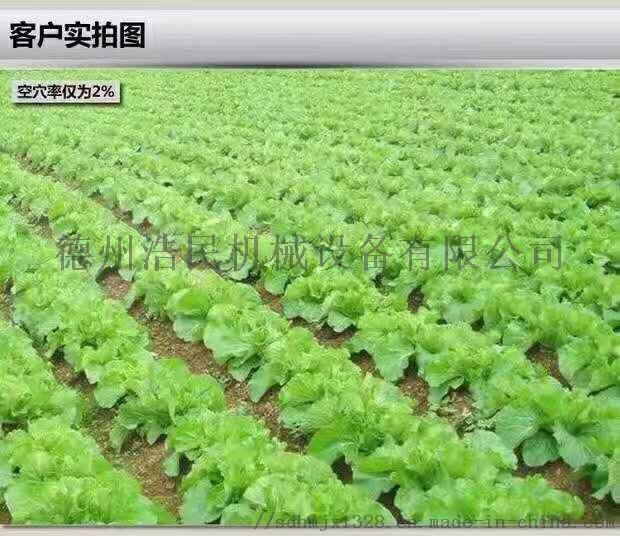 人力播種機 蔬菜播種機 白菜 菠菜精播機61128652