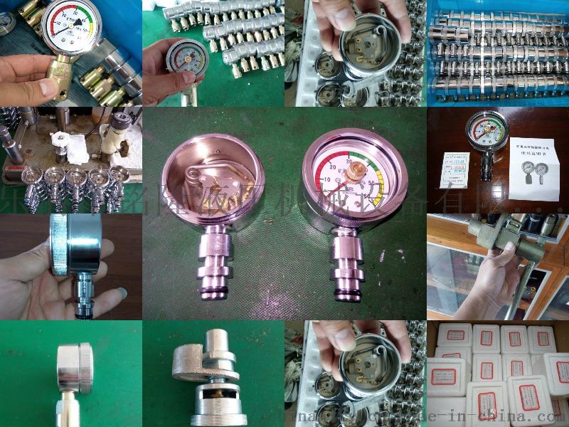综采支架测压表(双表)带外壳式双针耐震压力表117600292