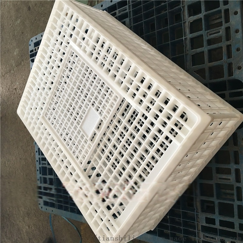 山东天仕利供应塑料大鸡笼子 装鸭用塑料笼子835716542
