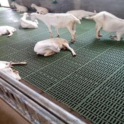 厂家供应羊用漏粪板 山养漏粪板厂家 羊用塑料漏粪板111752732