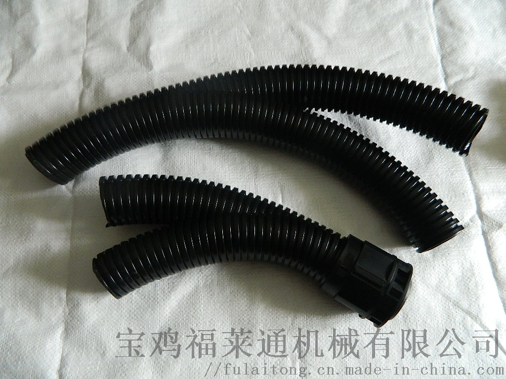 DSCN6270.JPG