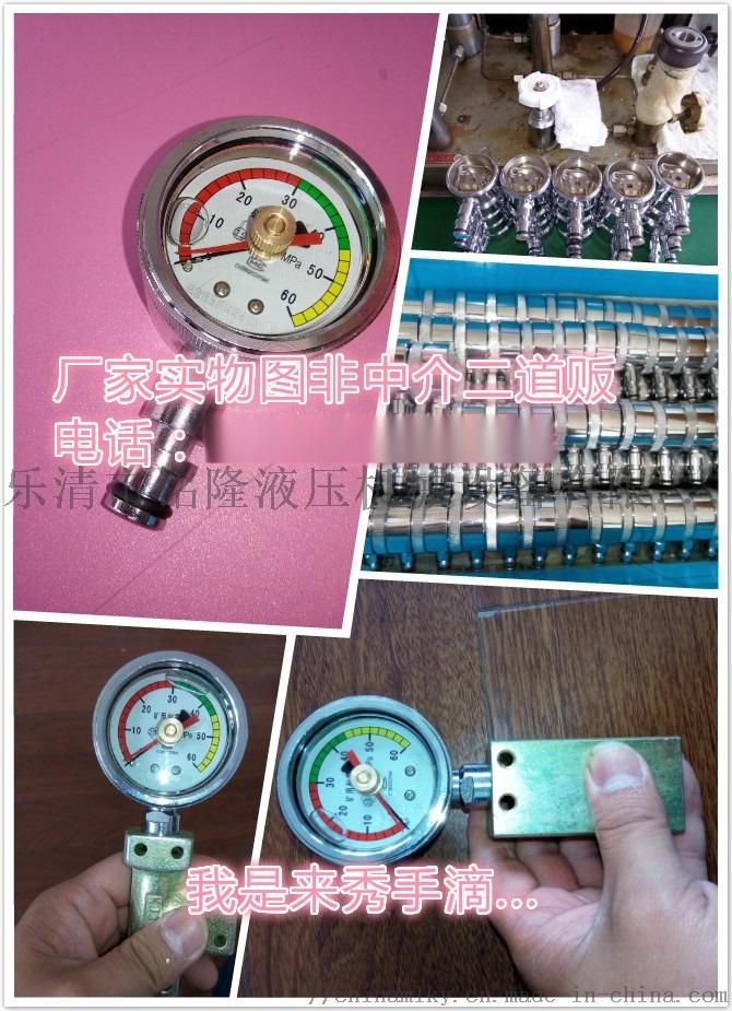 综采支架测压表(双表)带外壳式双针耐震压力表845094682