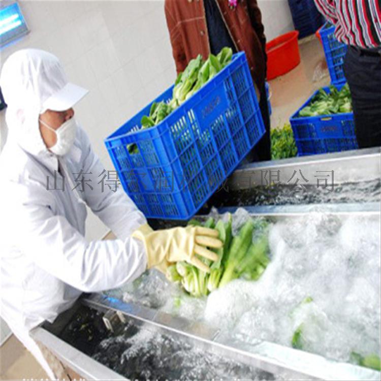 V净菜加工设备 气泡臭氧消毒洗菜机 水果蔬菜清洗机55869212
