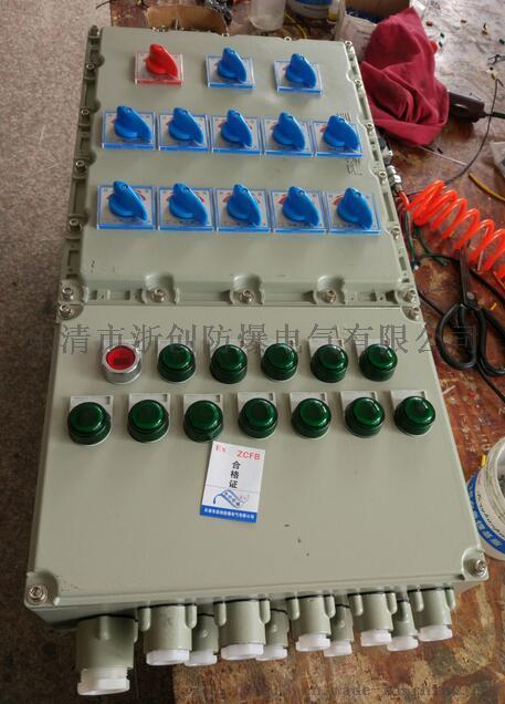 BXMD户外防爆箱厂家/立式/带防雨罩93828425