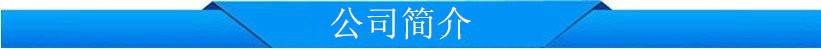 公司简介 (2)
