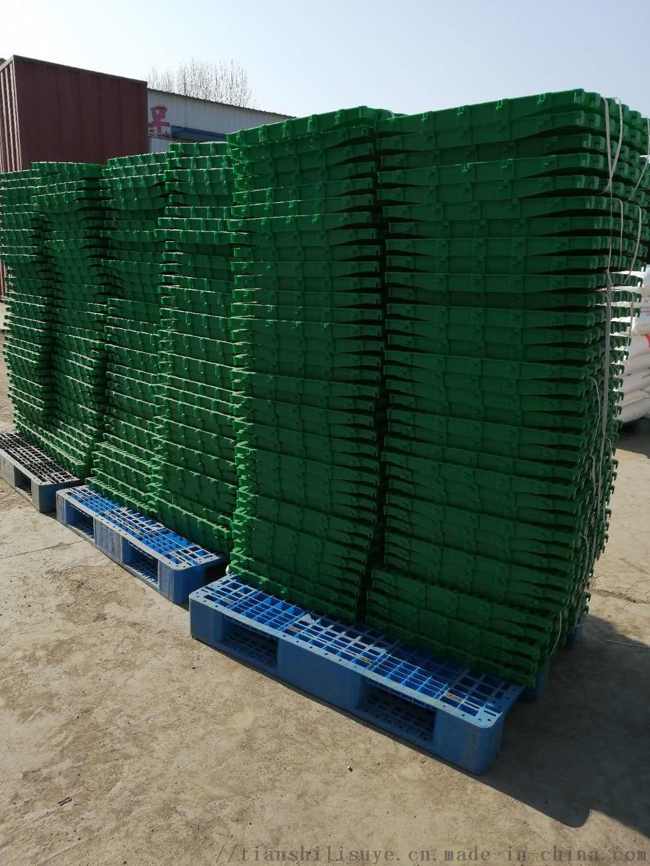 天仕利羊漏粪板塑料羊地板羊用漏粪床865700572