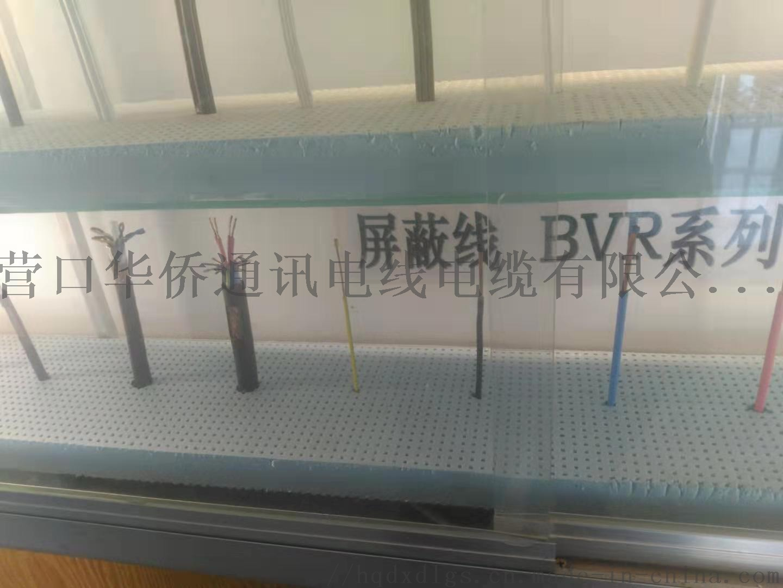 遮罩線RVVP.jpg