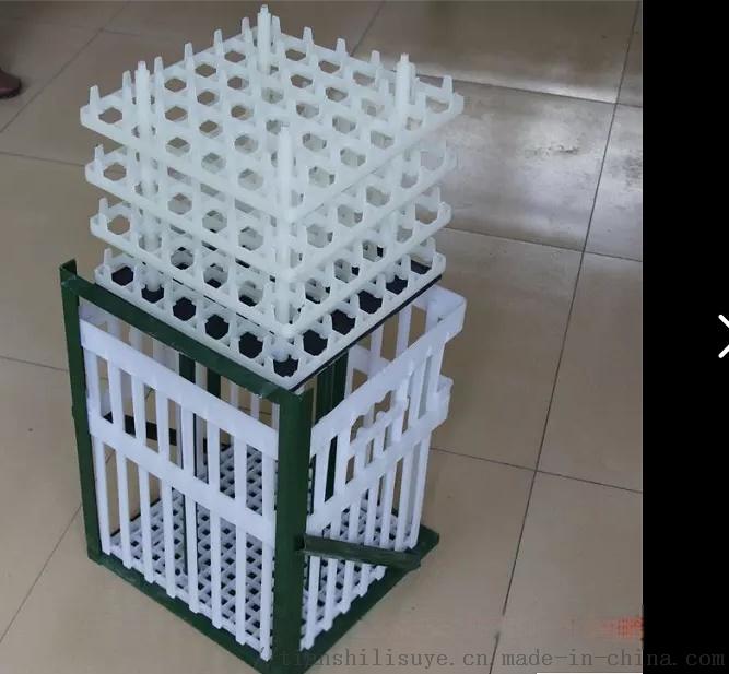 种蛋塑料运输筐 塑料蛋筐 种蛋运输箱133725835