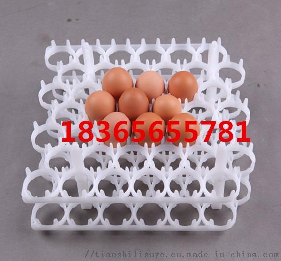 塑料蛋托 36枚鸡蛋托 塑料蛋托生产厂家134118305