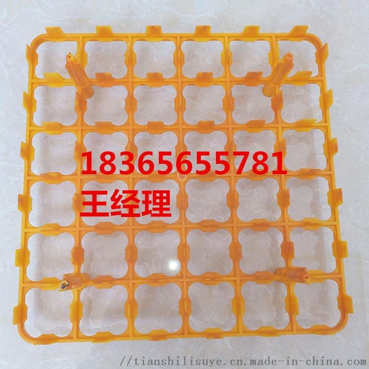 塑料鸡蛋托 36枚塑料鸡蛋托 塑料蛋托供应商848119182