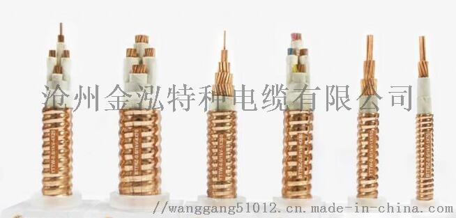 礦物絕緣電纜2.jpg