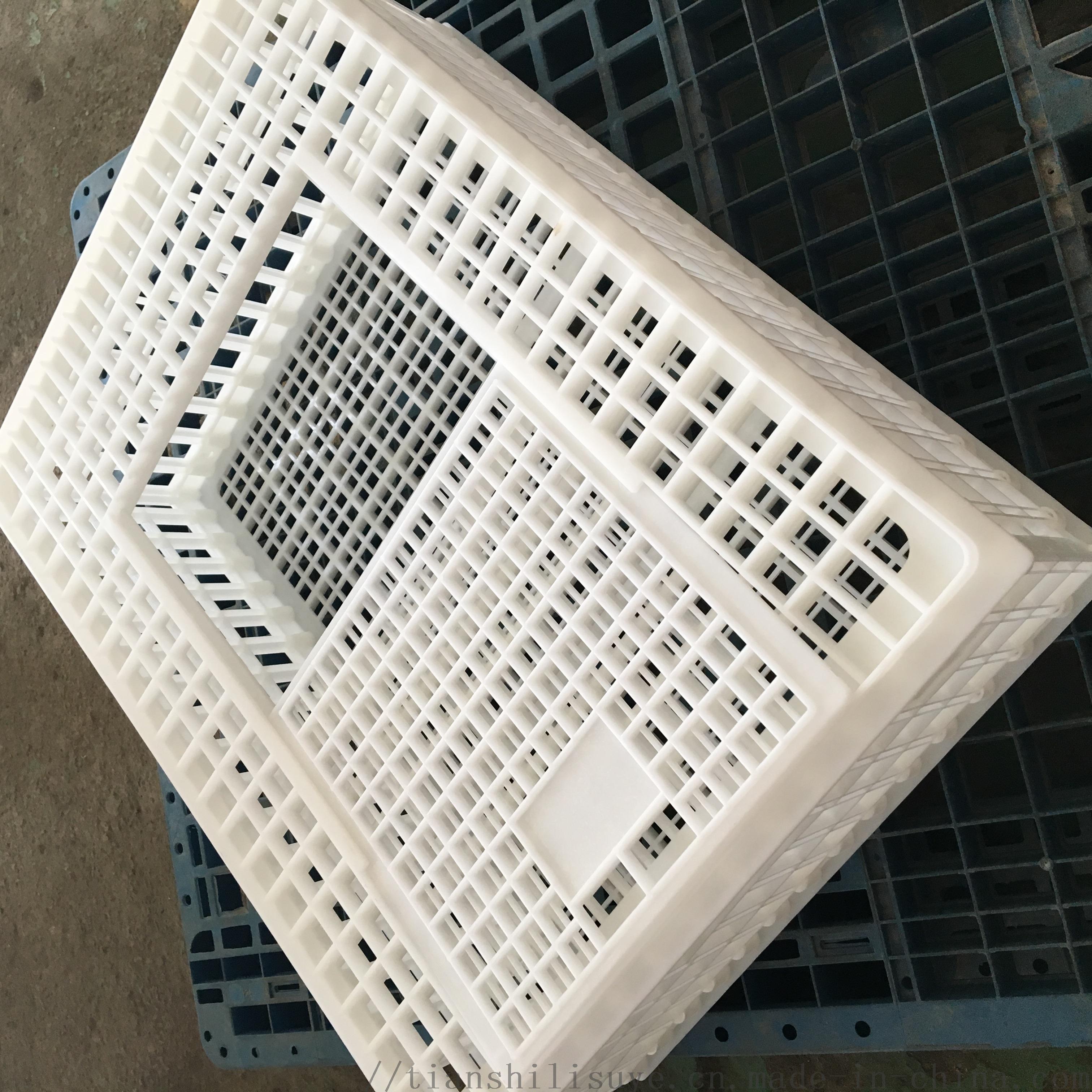 山东天仕利供应塑料大鸡笼子 装鸭用塑料笼子112864702