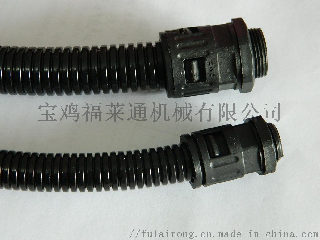 DSCN2580.JPG