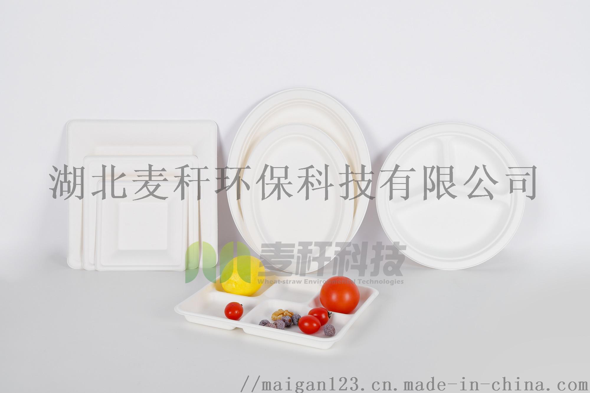 環保可降解一次性食具,工廠直髮,9寸圓盤831047732