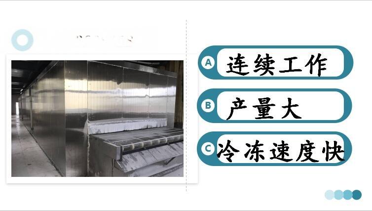海参速冻设备 红参单个速冻机116785752