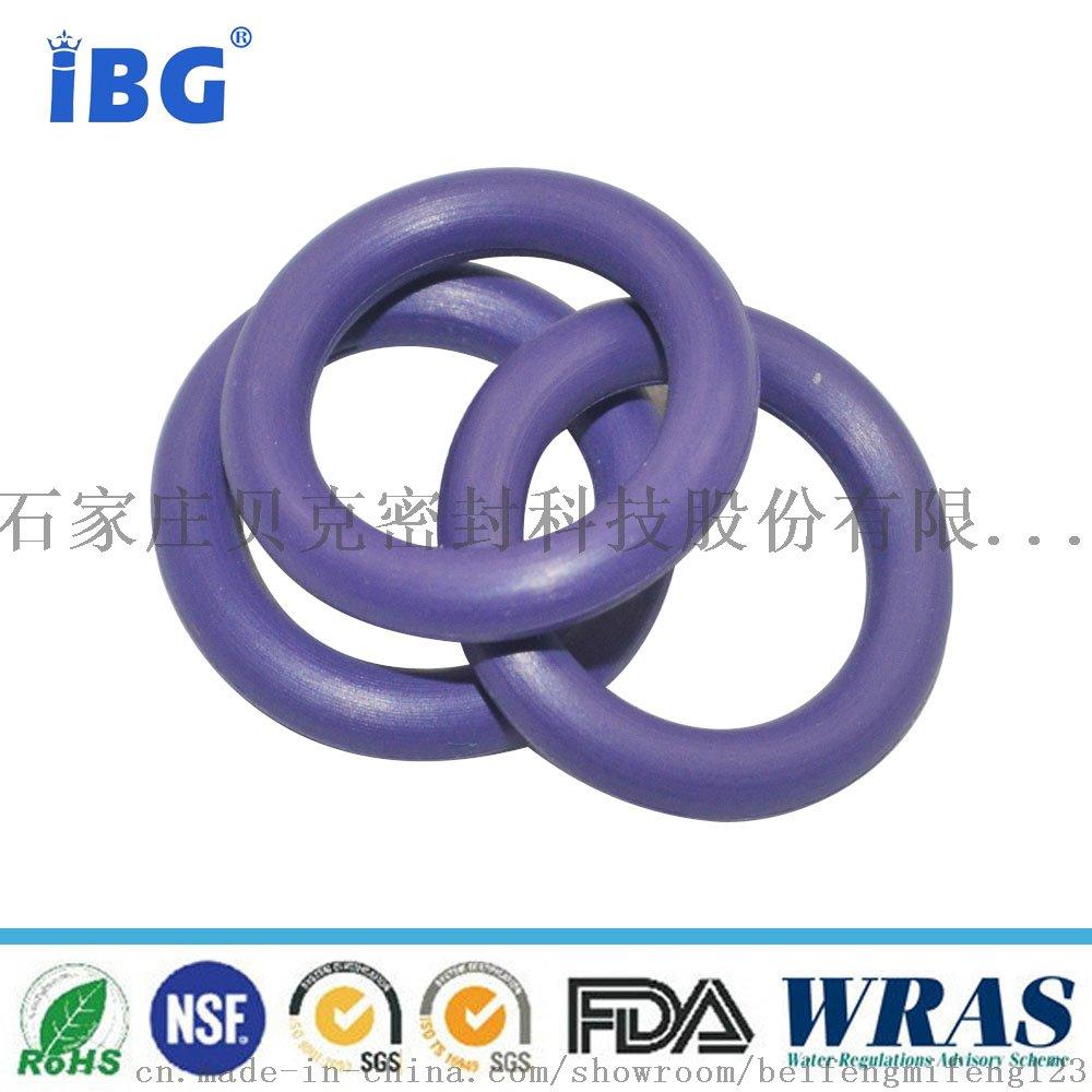 N7001097-O-ring修理盒8
