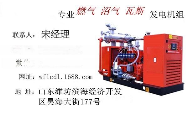 燃氣1.jpg