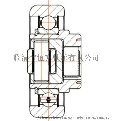 NL070 2型叉车侧面轴承结构图.jpg