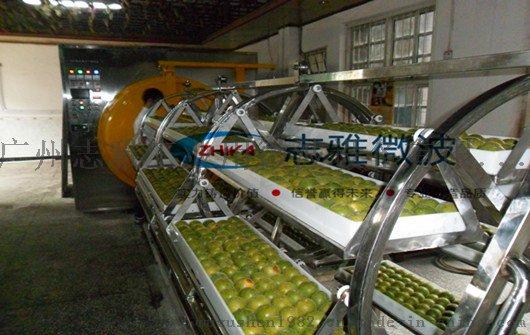 广州志雅微波真空干燥机,客户高度认可60079005